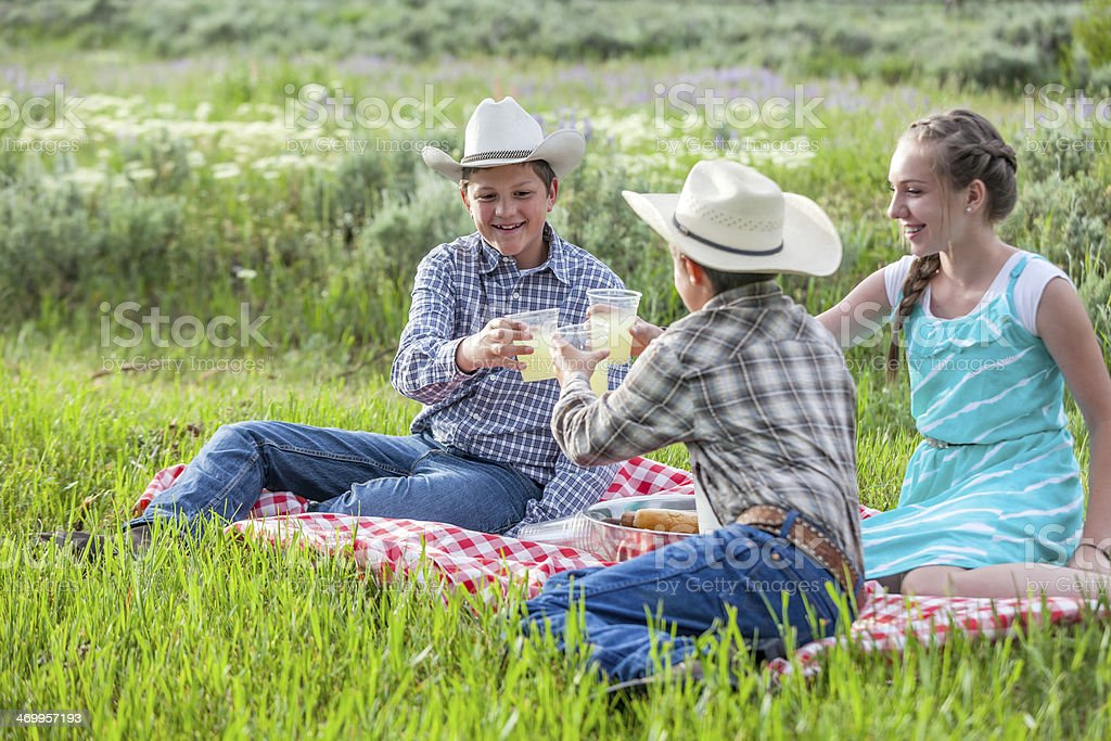 Outdoor Picnic with Family stock photo