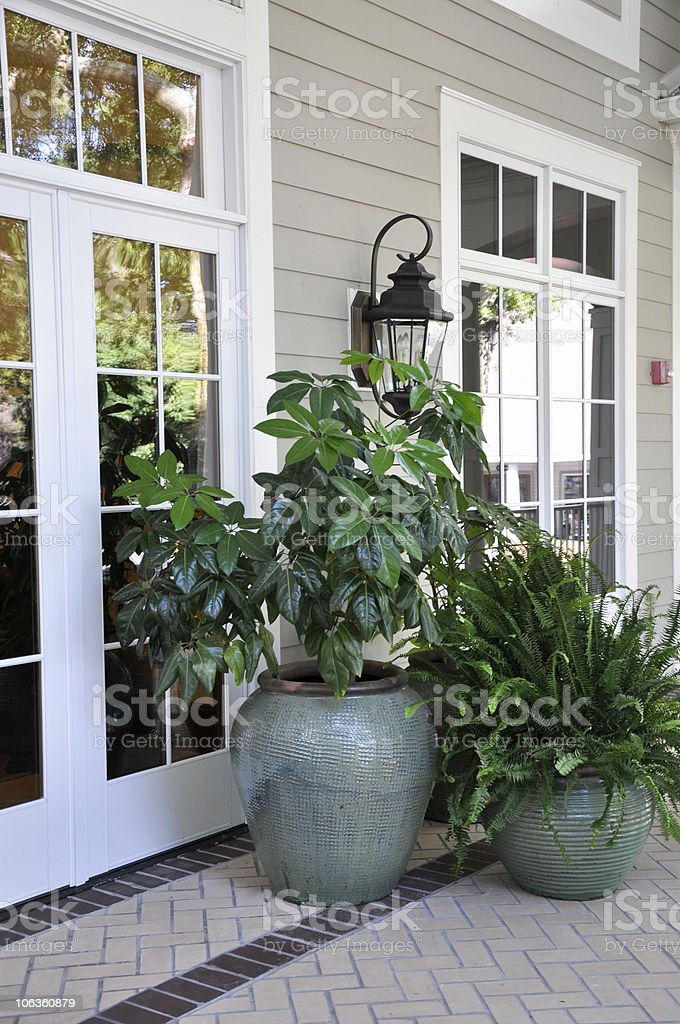 outdoor potted plants stock photo