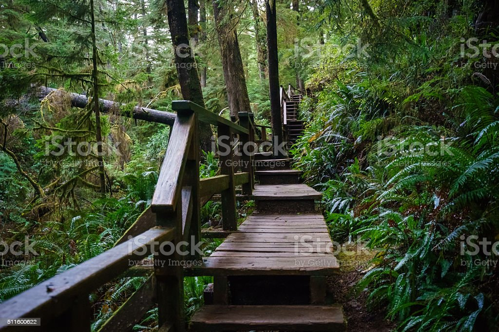 Outdoor Stair Master stock photo