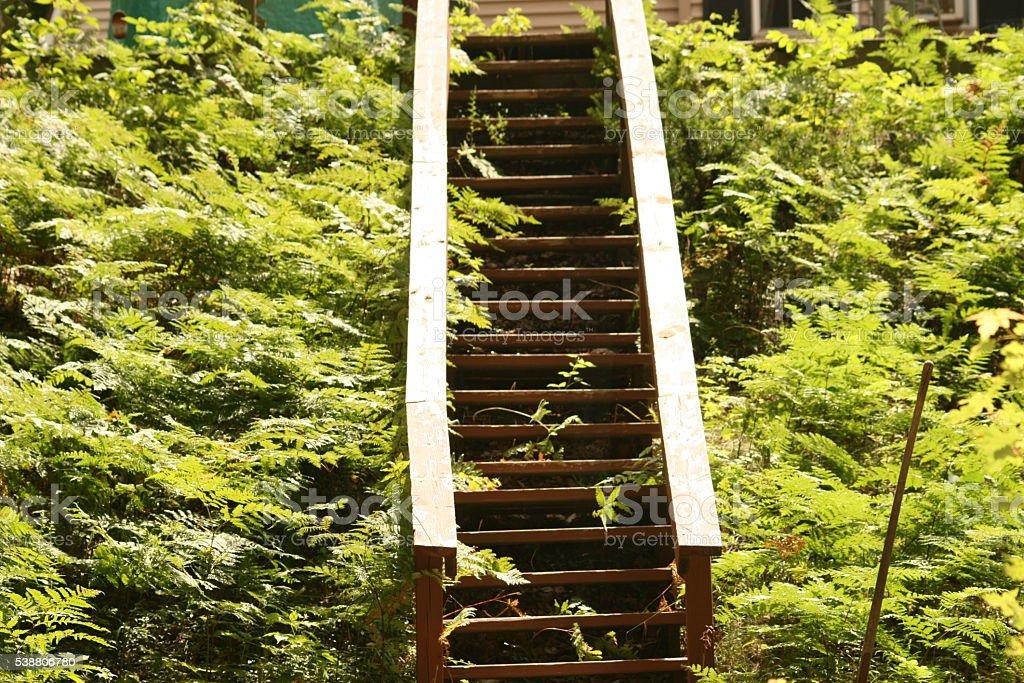 Outdoor Staircase stock photo
