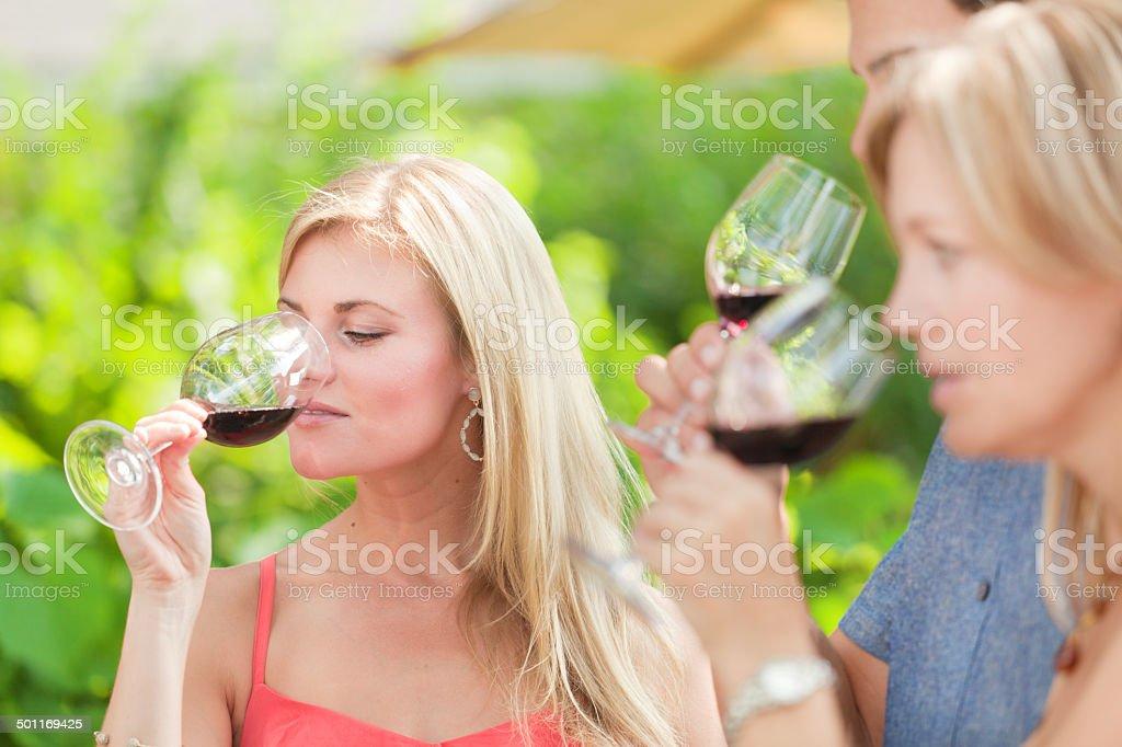 Outdoor Wine Tasting in Winery Vineyard Horizontal royalty-free stock photo