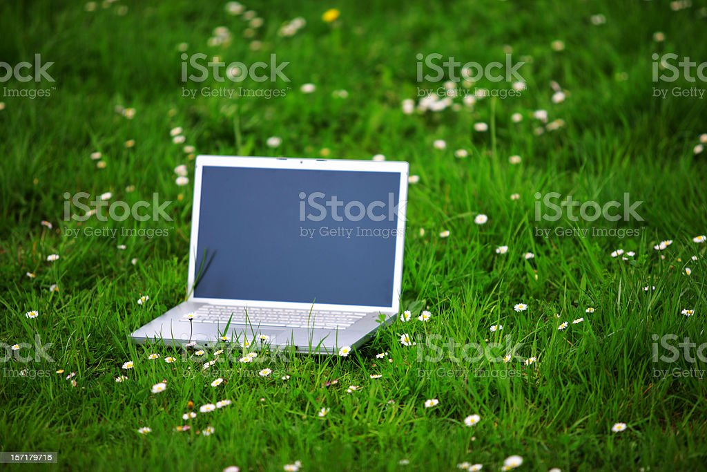 Outdoors office royalty-free stock photo