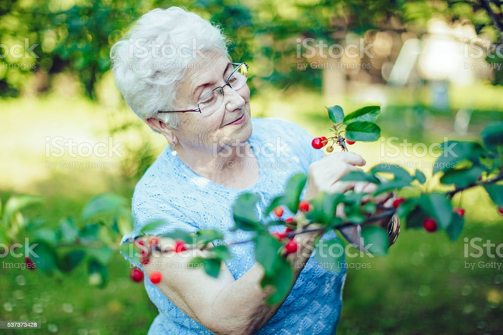Outdoors portrait of a beautiful senior woman in her garden stock photo