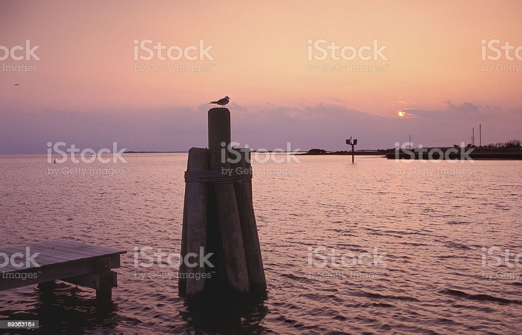 outer banks sunset stock photo