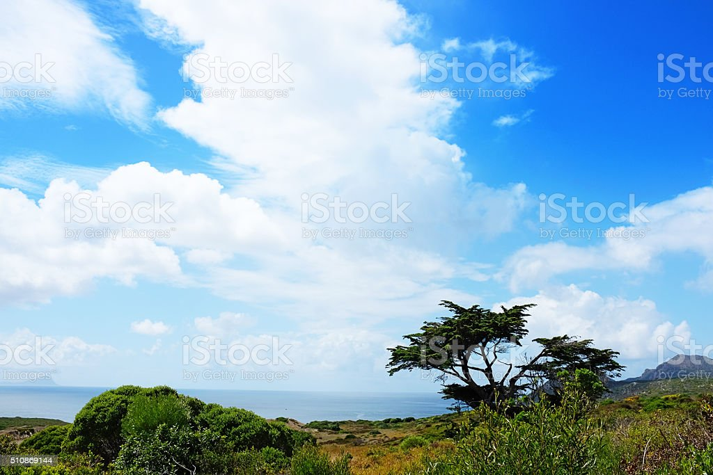 Outlook from Cape Point hiking trail over sea and sky stock photo