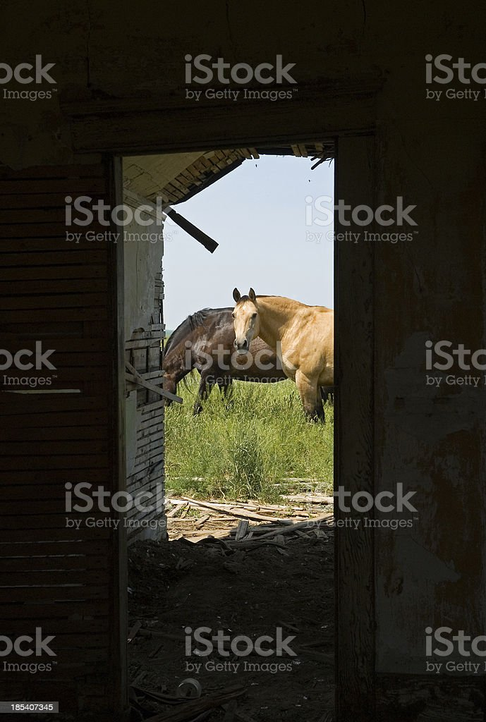 Outside looking in stock photo