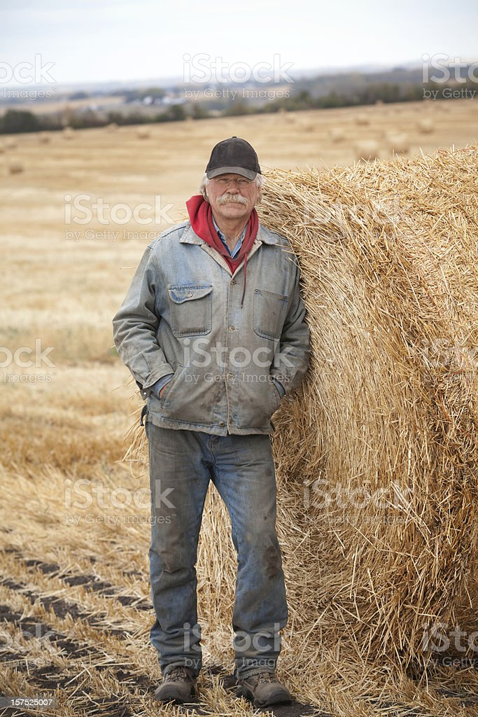 Outstanding In His Field royalty-free stock photo