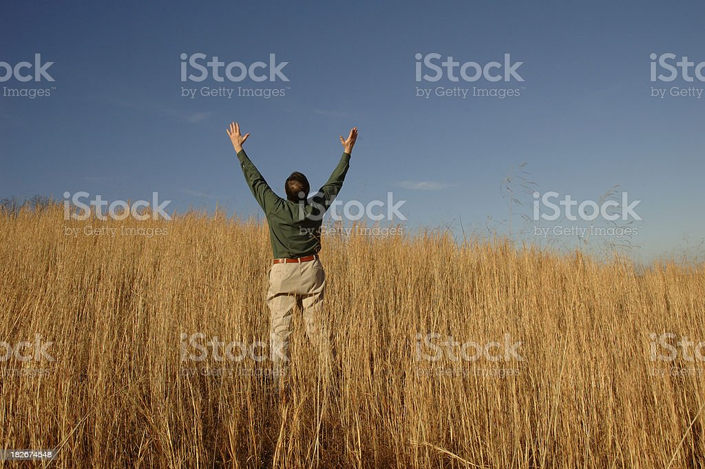 Outstanding in the Field royalty-free stock photo