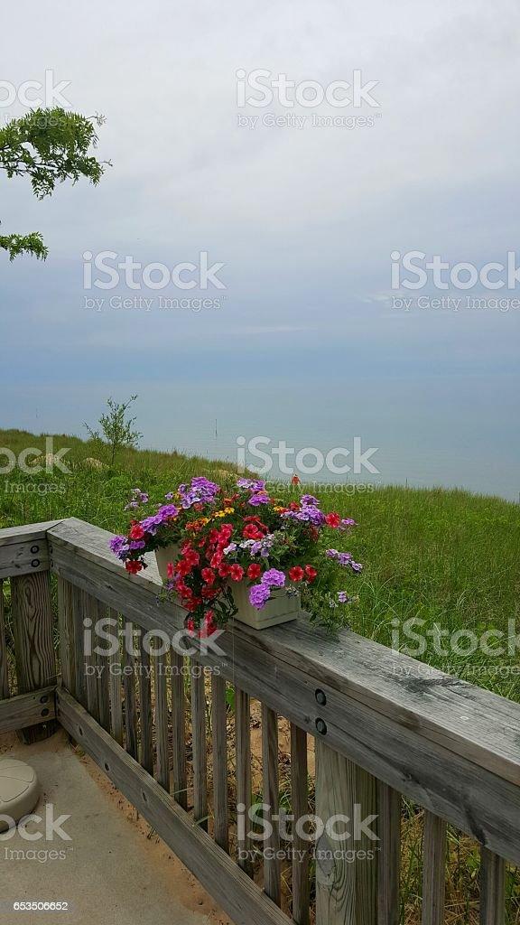 Oval Beach stock photo