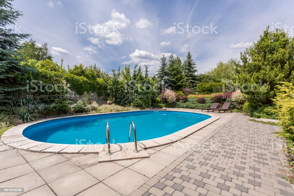 Oval swimming pool in a garden area, surrounded by plants