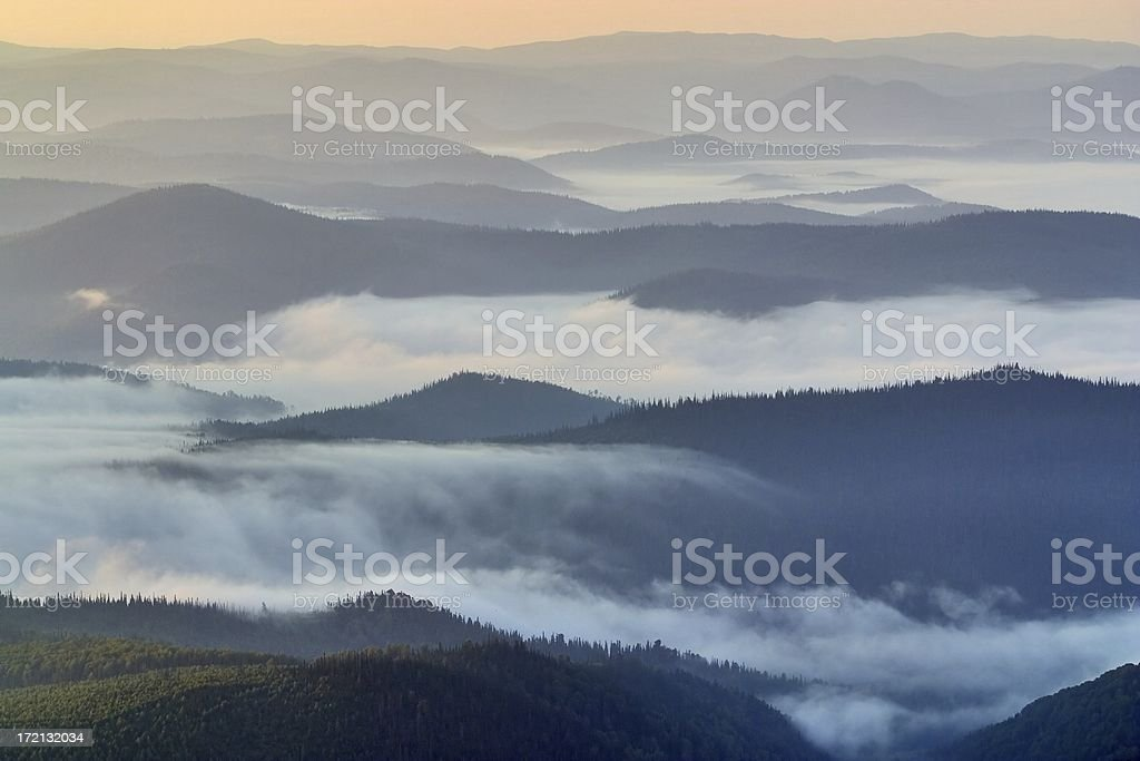over fog stock photo