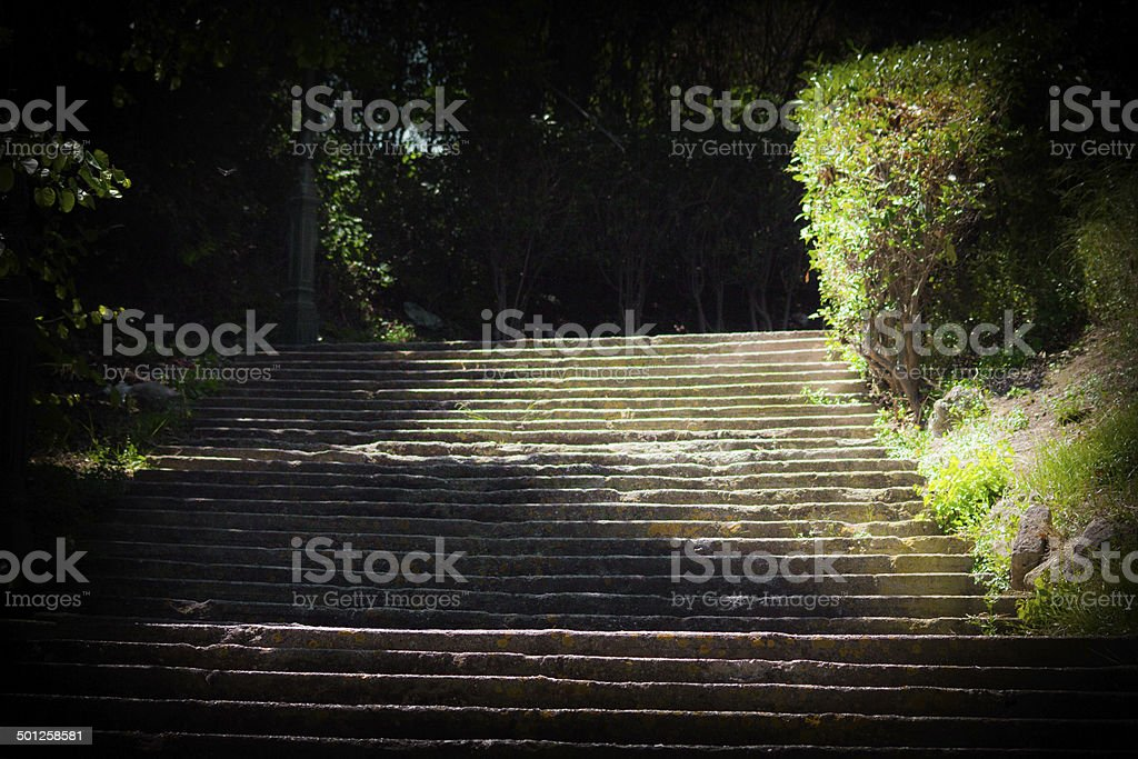 Over grown staircase stock photo