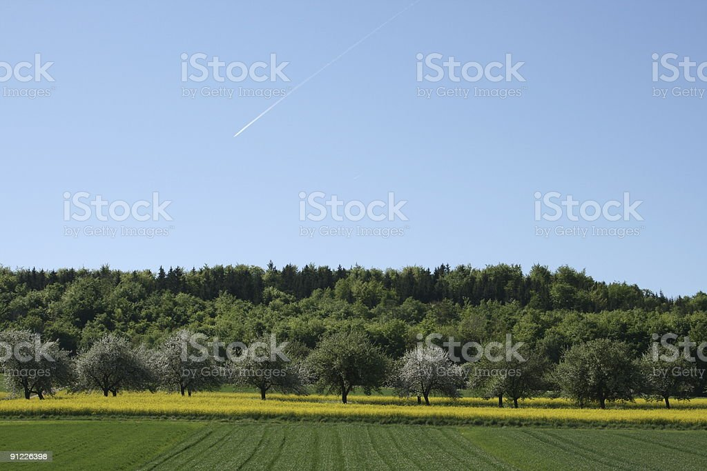 UFO over Spring Trees stock photo