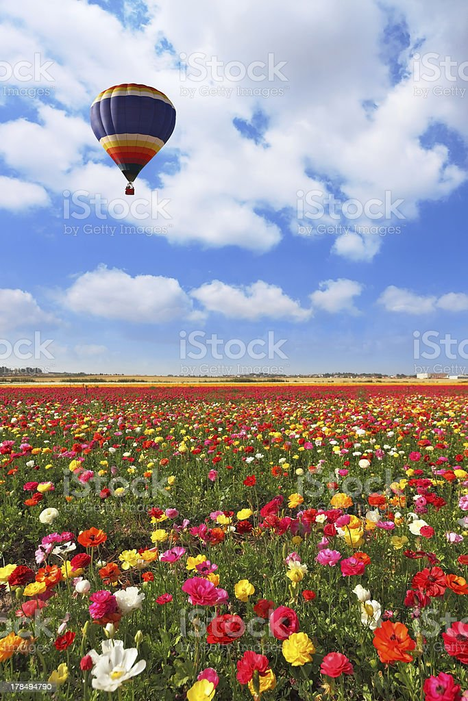 Over the field of flying a balloon royalty-free stock photo
