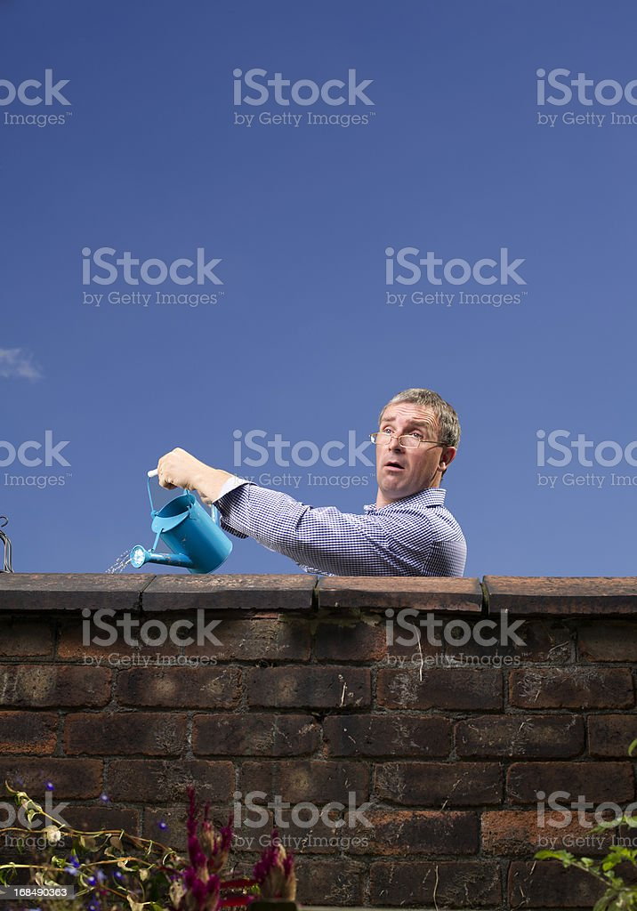 over the garden wall stock photo