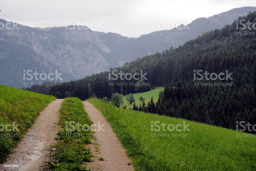 Over the mountain pasture stock photo