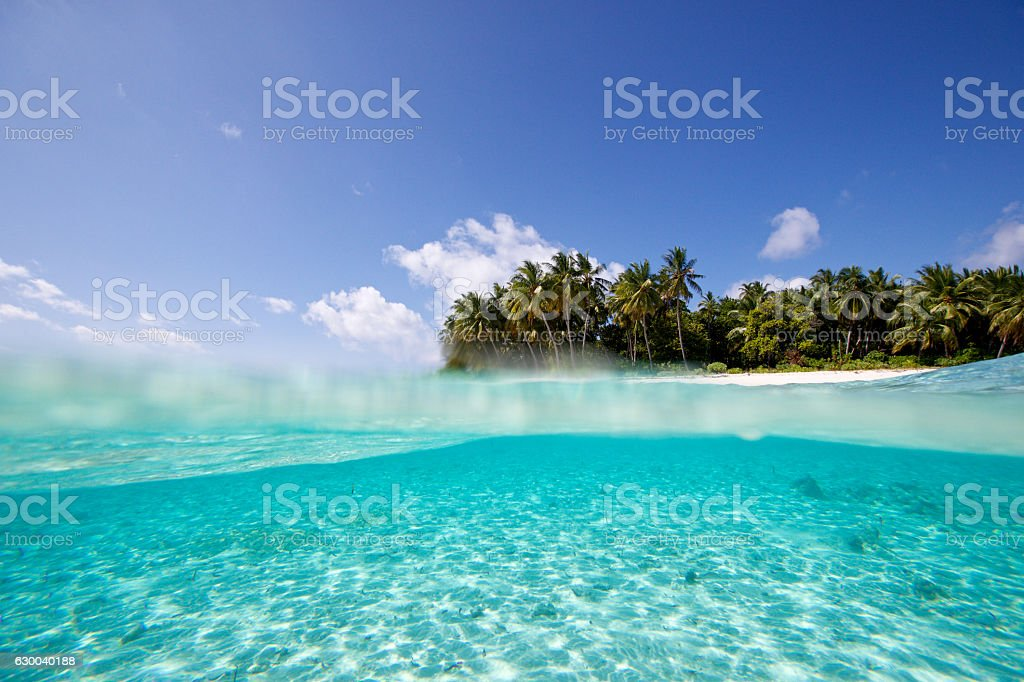 Over Under View of a tropical isalnd from the water stock photo