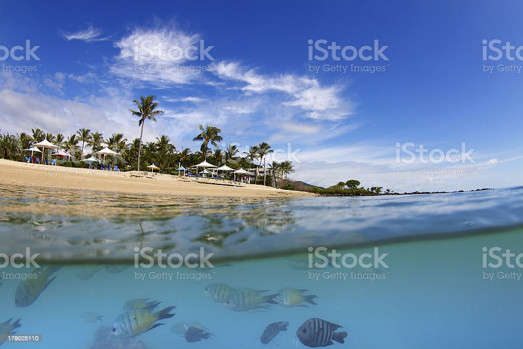Over underwater of island in Whitsundays stock photo