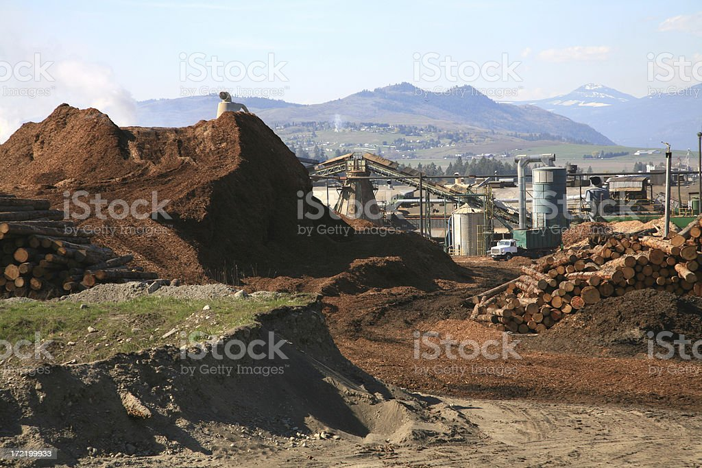 Overall View of Sawmill royalty-free stock photo