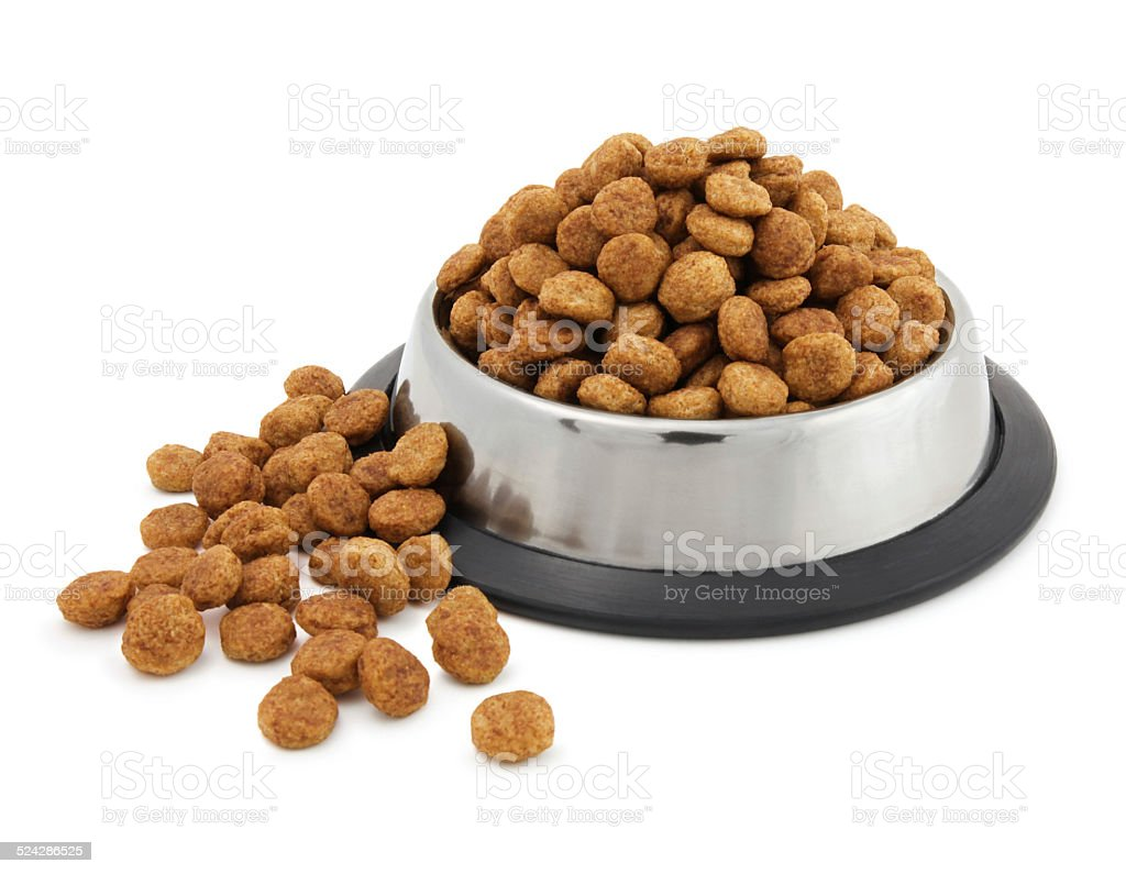 Overflowing dog food bowl stock photo
