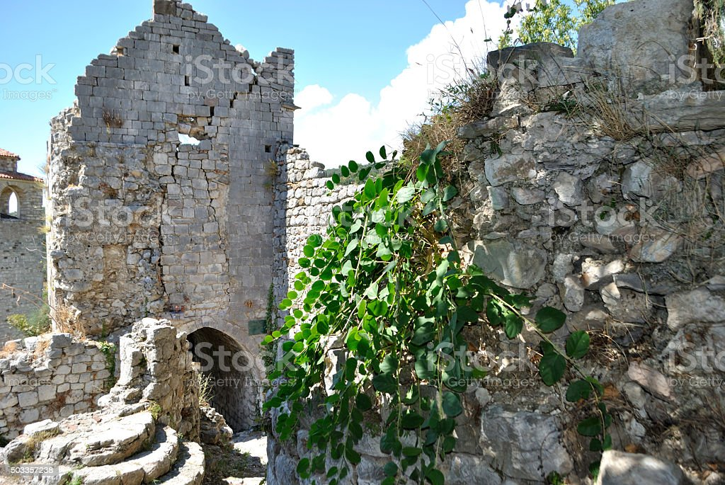 Overgrowing ruins of old palace. stock photo
