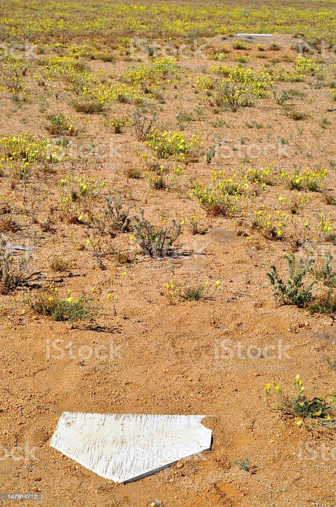 Overgrown Baseball Field stock photo