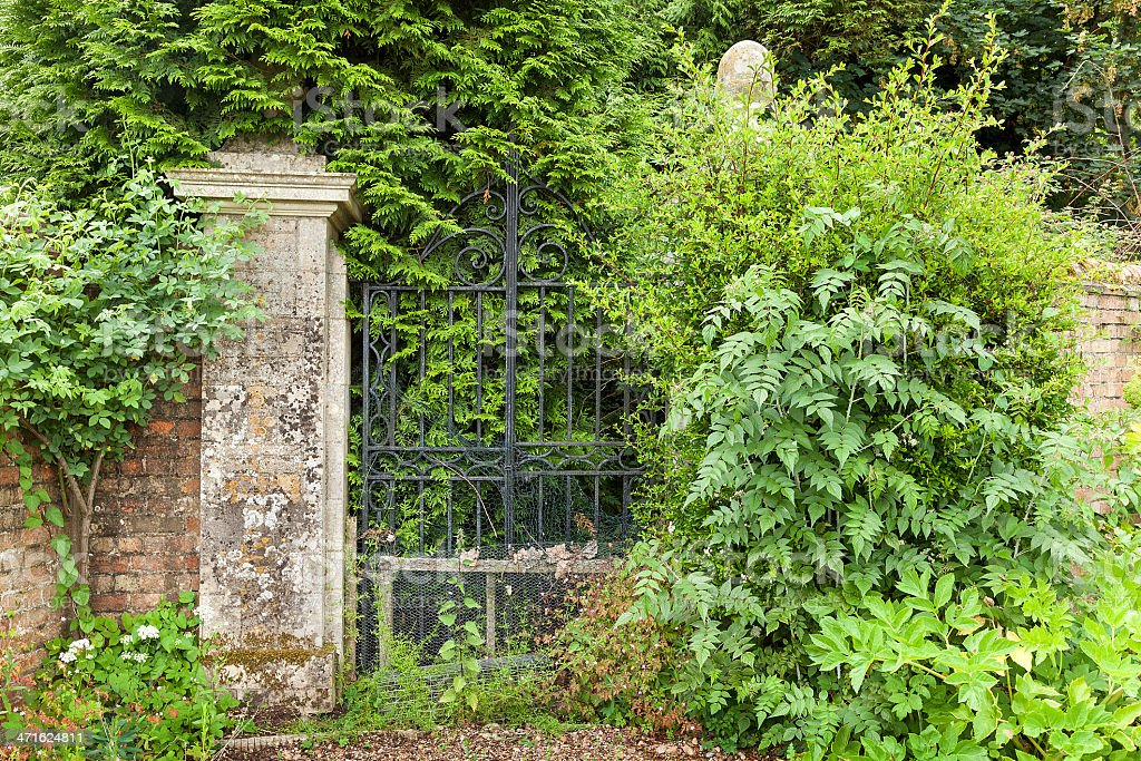 Overgrown black wrought iron gates. royalty-free stock photo