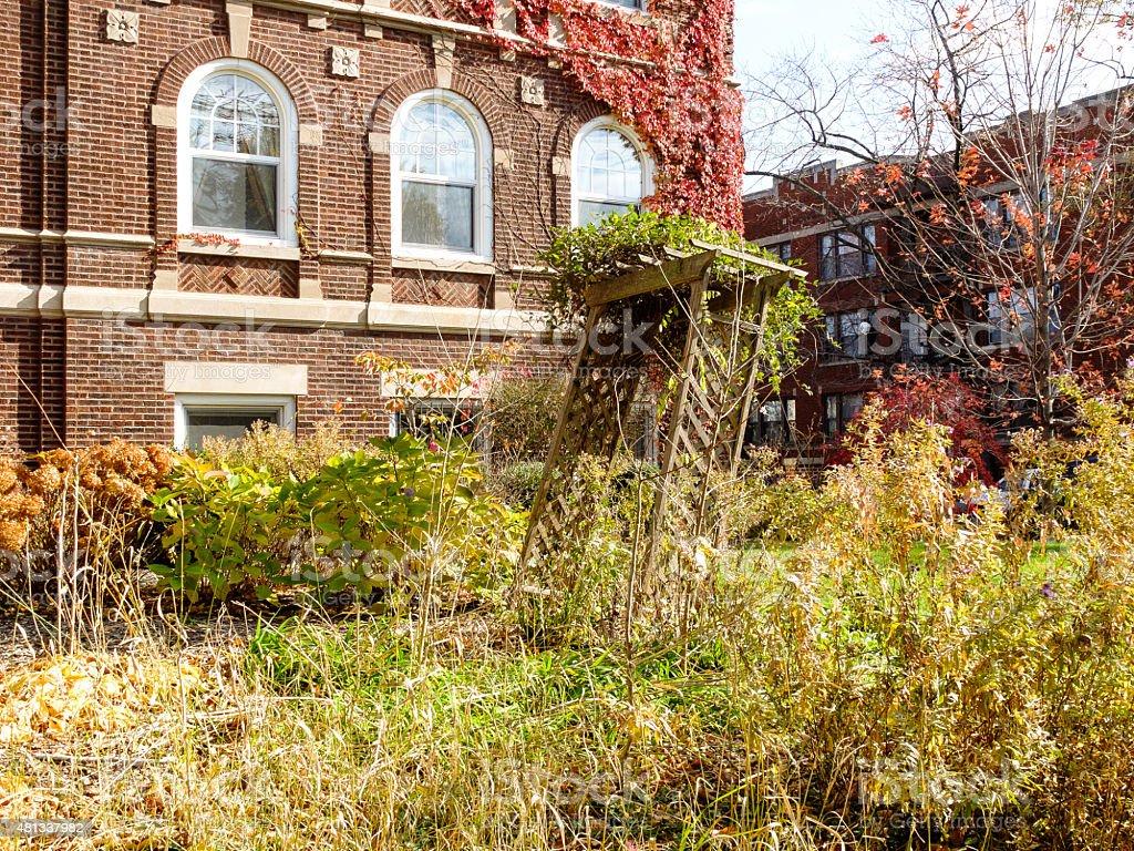 Overgrown Fall Garden stock photo