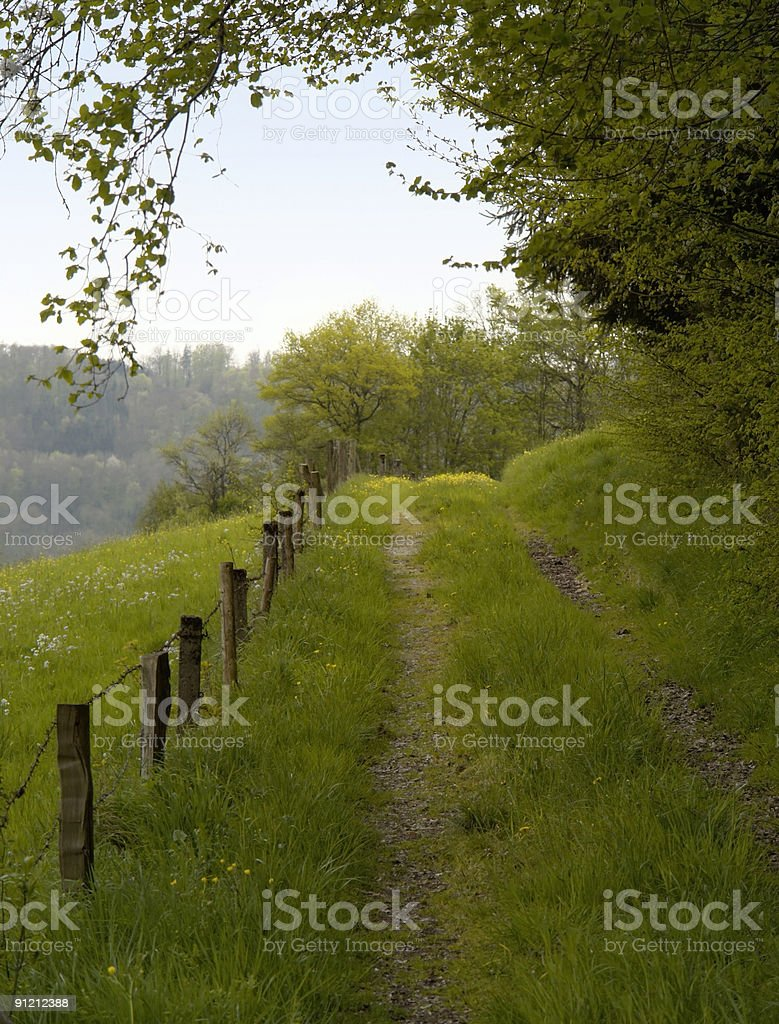 overgrown field path royalty-free stock photo