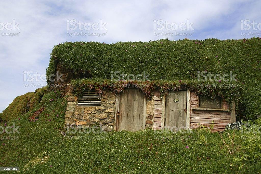 Overgrown fishing hut stock photo