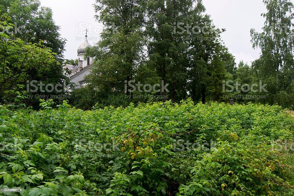 Overgrown garden and Orthodox Church stock photo