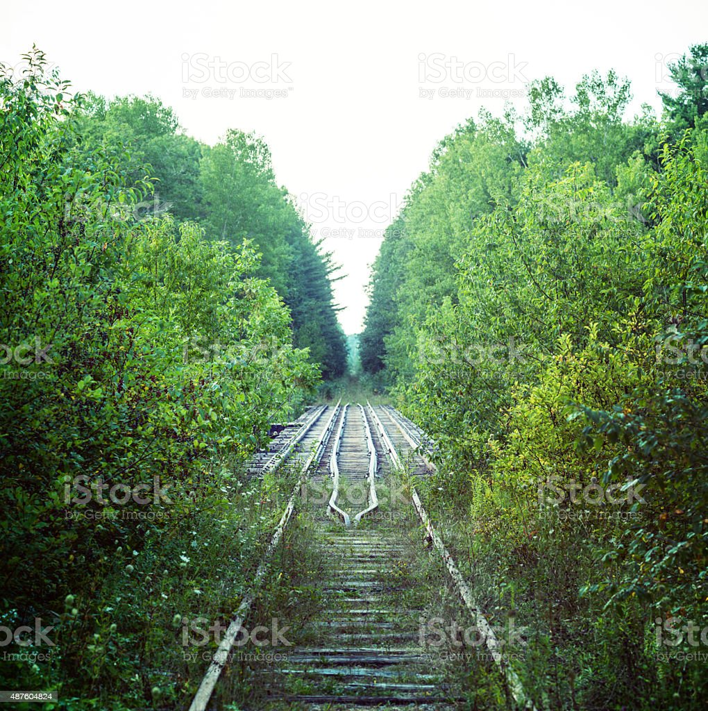 Overgrown Railroad stock photo