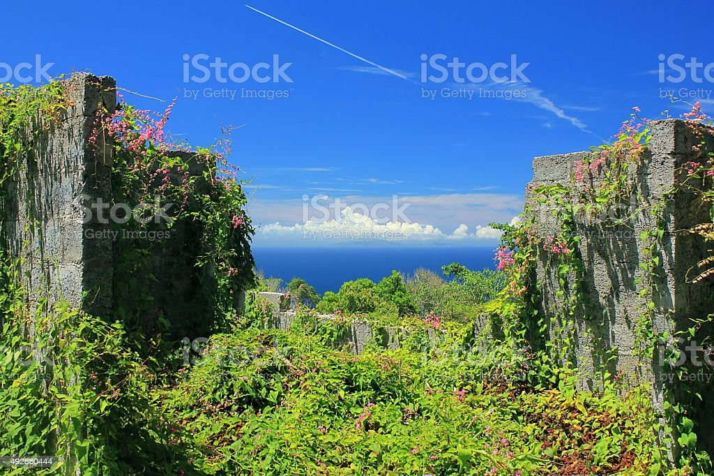 Overgrown ruin on Saba Island, Dutch Caribbean stock photo
