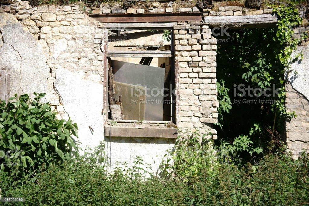 Overgrown ruin stock photo