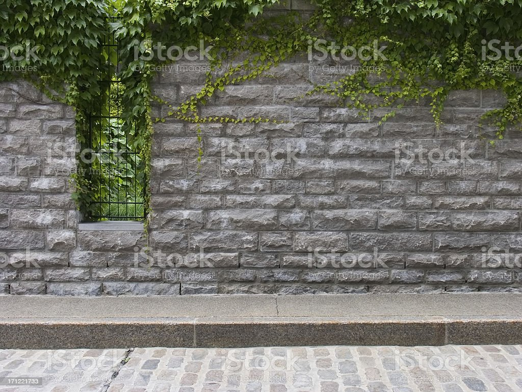 Overgrown Stone Wall stock photo