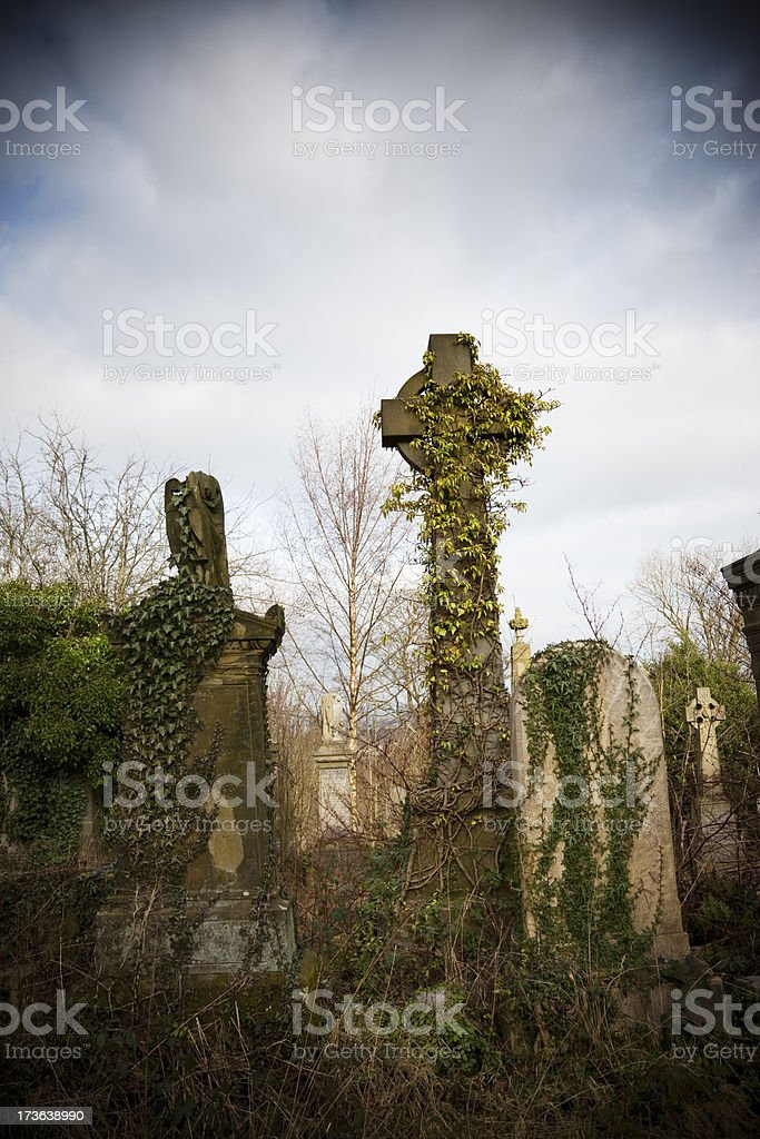 Overgrown Urban Graveyard royalty-free stock photo