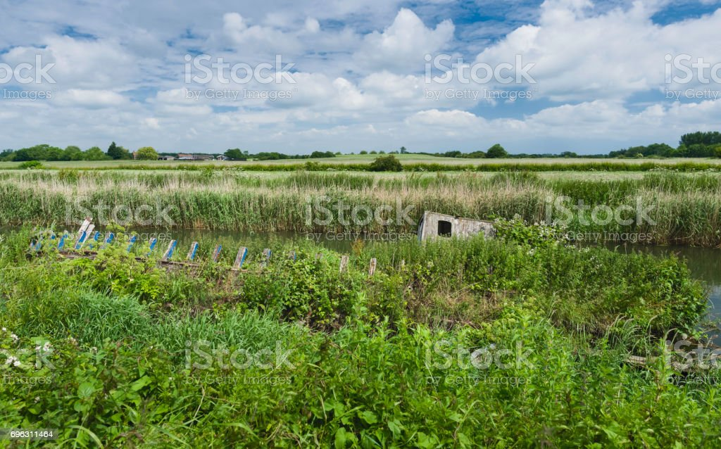 Overgrown vegetation and aAbandoned, derelict river boat on river Hull, Yorkshire, UK. stock photo