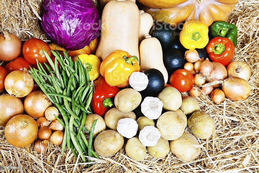 Overhead look at collection of healthy fresh vegetables on straw royalty-free stock photo