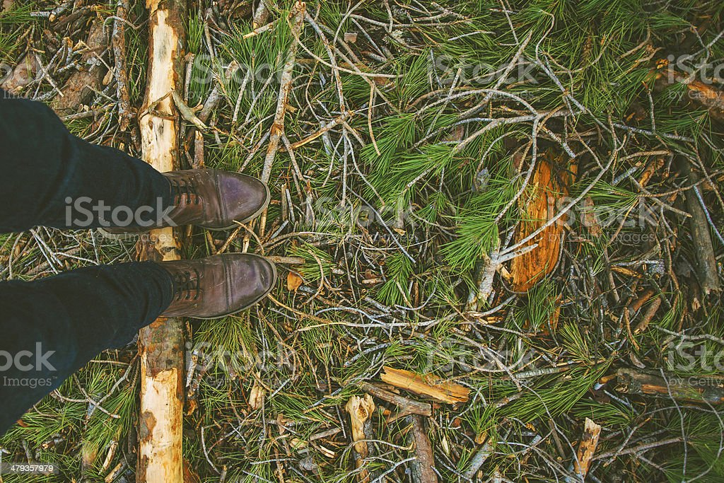 Overhead of man boots treading a pine log. stock photo