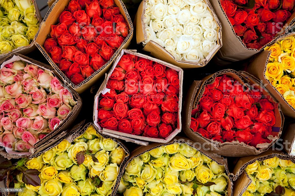 Overhead shot of bunches of roses stock photo