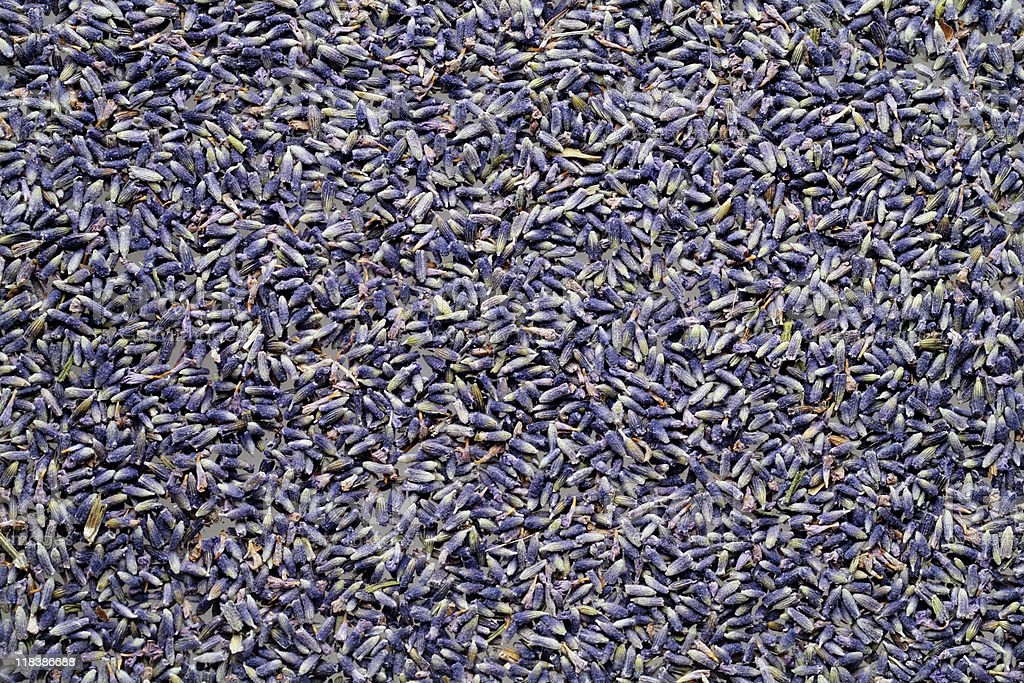 Overhead shot of Lavender texture background royalty-free stock photo