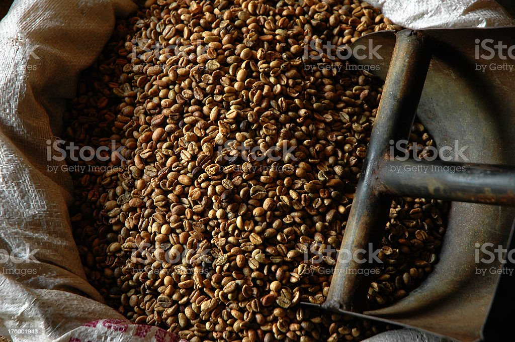 Overhead view of coffee beans in a sack with scoop royalty-free stock photo