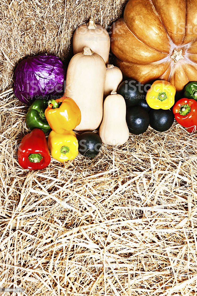Overhead view of glossy ripe fresh vegetables on straw royalty-free stock photo