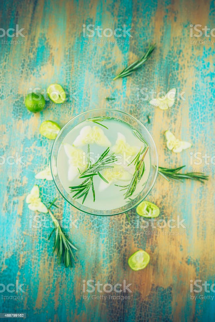 Overhead view of martini drink with rosemary, lime and cucumber stock photo