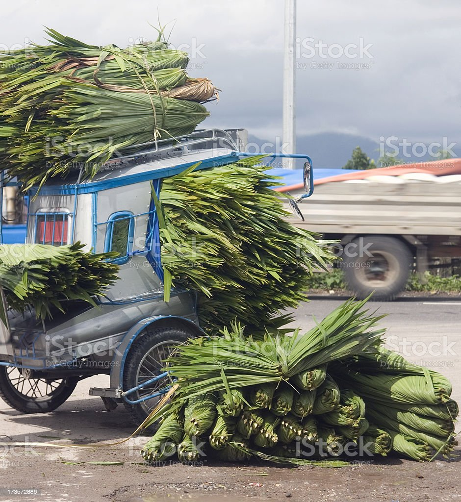 Overloaded motorcycle sidecar royalty-free stock photo