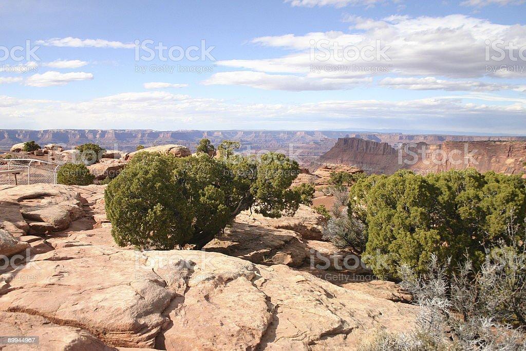 Ignorar a de Canyonlands foto de stock royalty-free