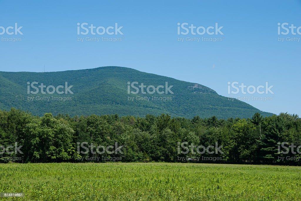Overlook Mountain from Zena Cornfield stock photo