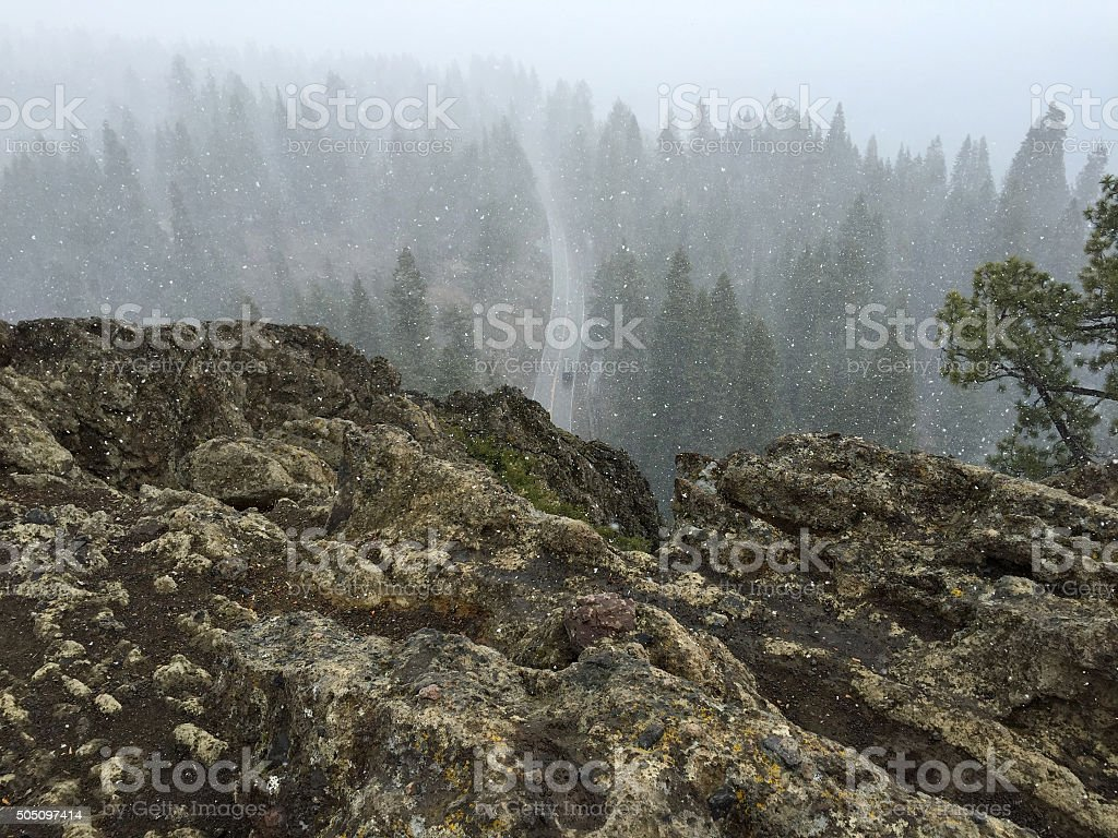 Overlooking a Road and Trees on a Snowy Day royalty-free stock photo