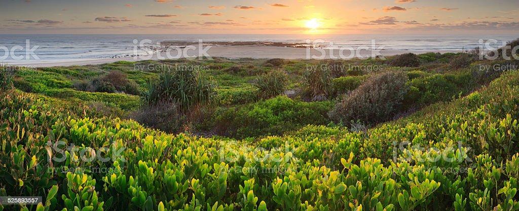 Overlooking Flat Rock Sunrise Panorama stock photo
