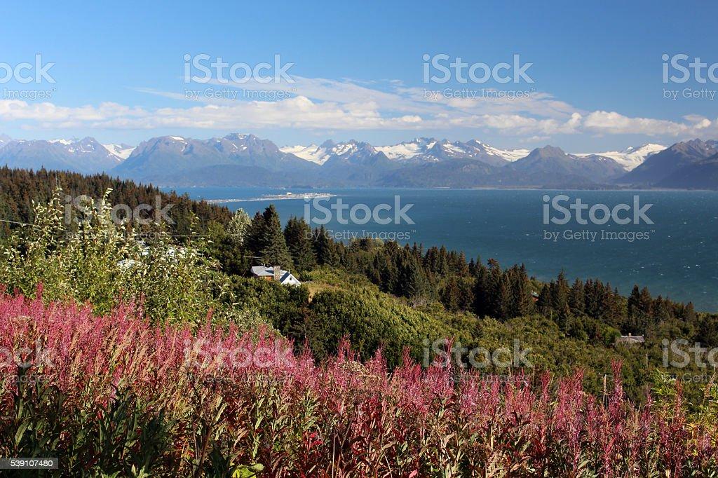 Overlooking Homer Alaska stock photo